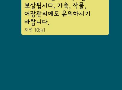 【韓国大学院】ソウル大ツアー withユウォリさん♪