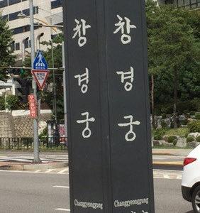 【韓国国内旅行】昌慶宮を散策!