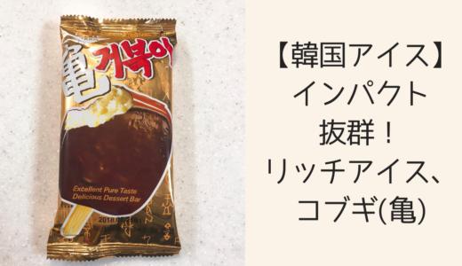 【韓国アイス】インパクト抜群!リッチアイス、コブギ(亀)