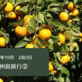 【韓国旅行】2020年10月 2泊3日 済州島(チェジュド)旅行②