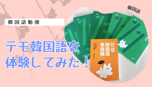【韓国語】テモ韓国語中級・上級「レベルアップパッケージ」を体験してみた!